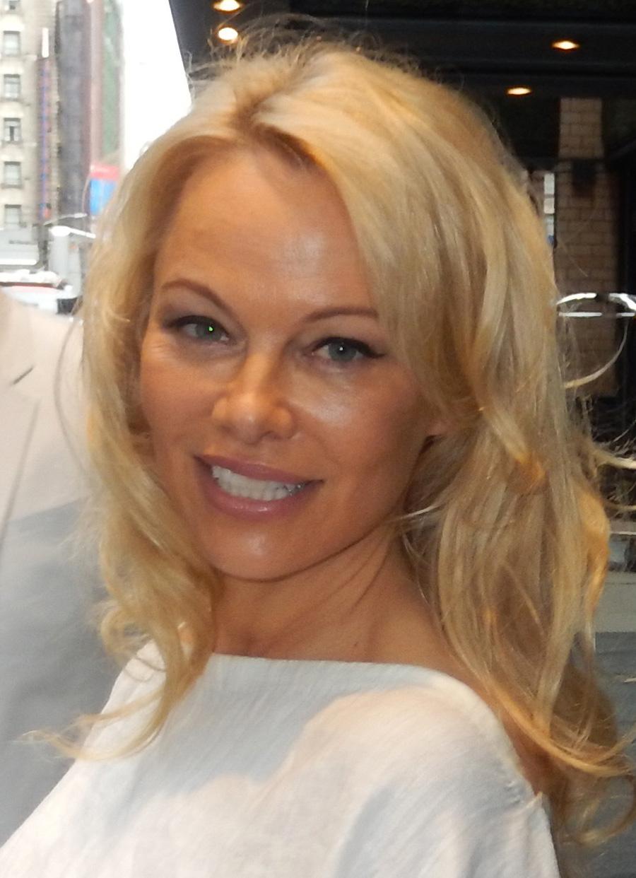 Pamela Anderson Video Tape photo 30