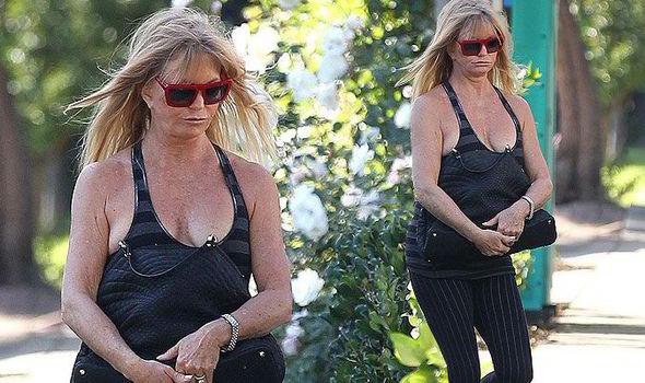 Goldie Hawn Nipples photo 16