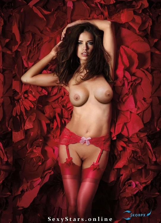 Adriana Lima Naked Pictures photo 20