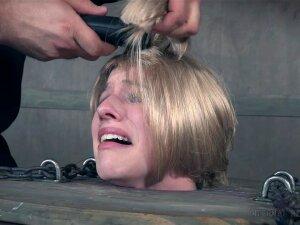 Porn Haircut photo 1